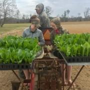 local family farms