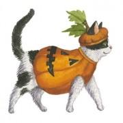 reuse Halloween pumpkins
