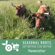 Harmony Hill Farm grassfed beef