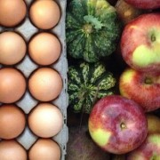 organic vs sustainable vs local