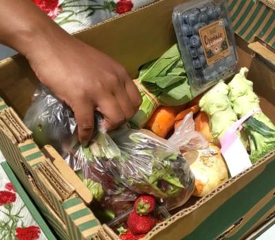 erica's box of farm-fresh produce