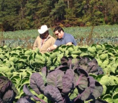 flores farm sustainable farming
