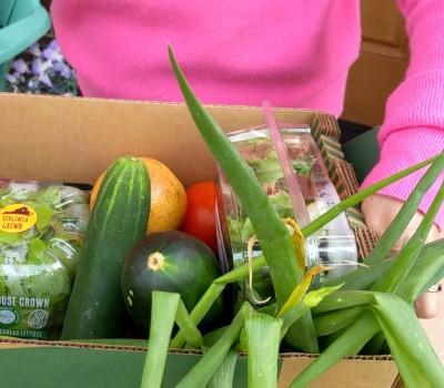 jo anne's box of fresh local food
